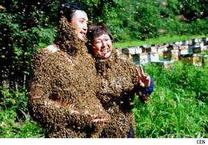 bee-suits