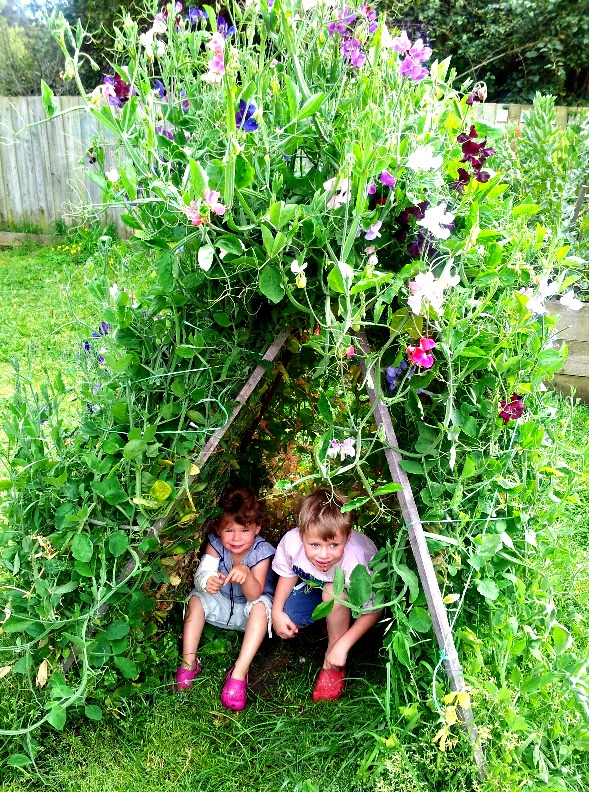 A Summer Hide Out For Your Sweetest Peas Little Bean Farms